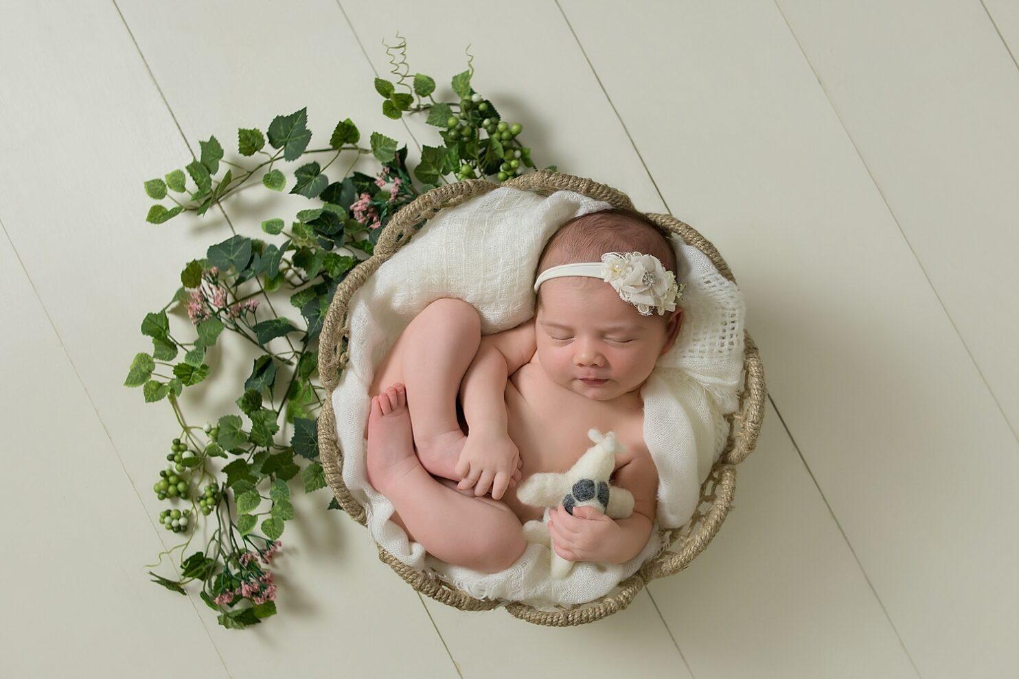newborn photography in hollywood fl